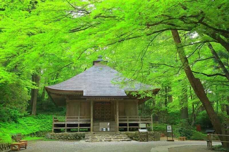 Chusonji temple surrounded by fresh green trees, Hiraizumi, Iwate Prefecture
