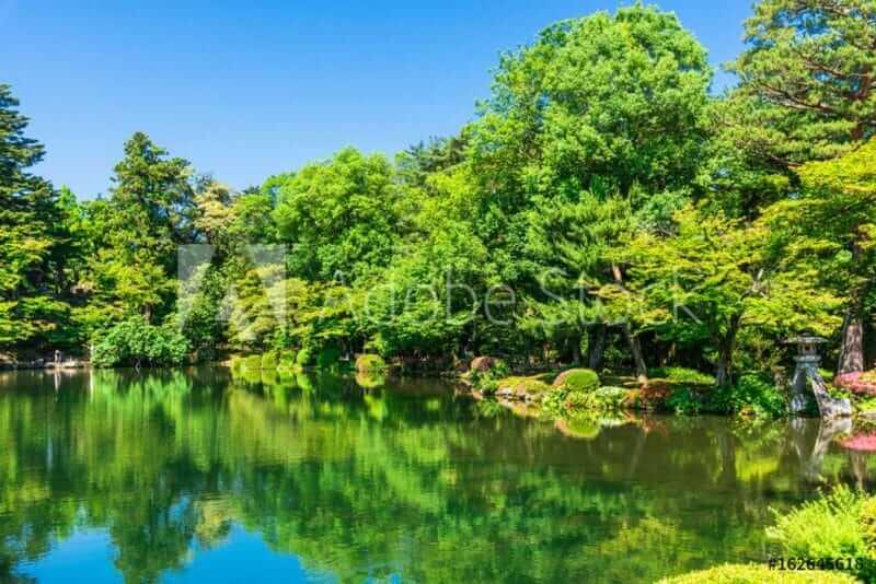 Fresh green color the garden in the spring = AdobeStock
