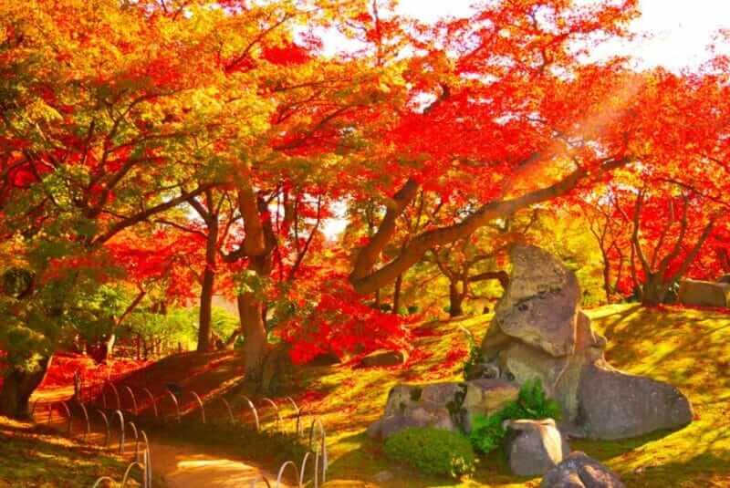 Korakuen in Okayama prefecture is also a landmark of autumn leaves = shutterstock