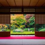 Harmony with Nature, Japan = Adobe Stock
