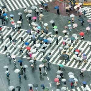 Shibuya Crossing in Tokyo, Japan = Adobe Stock