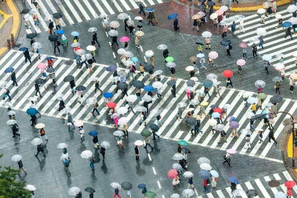 Shibuya Crossing in Tokio, Japan = Adobe Stock