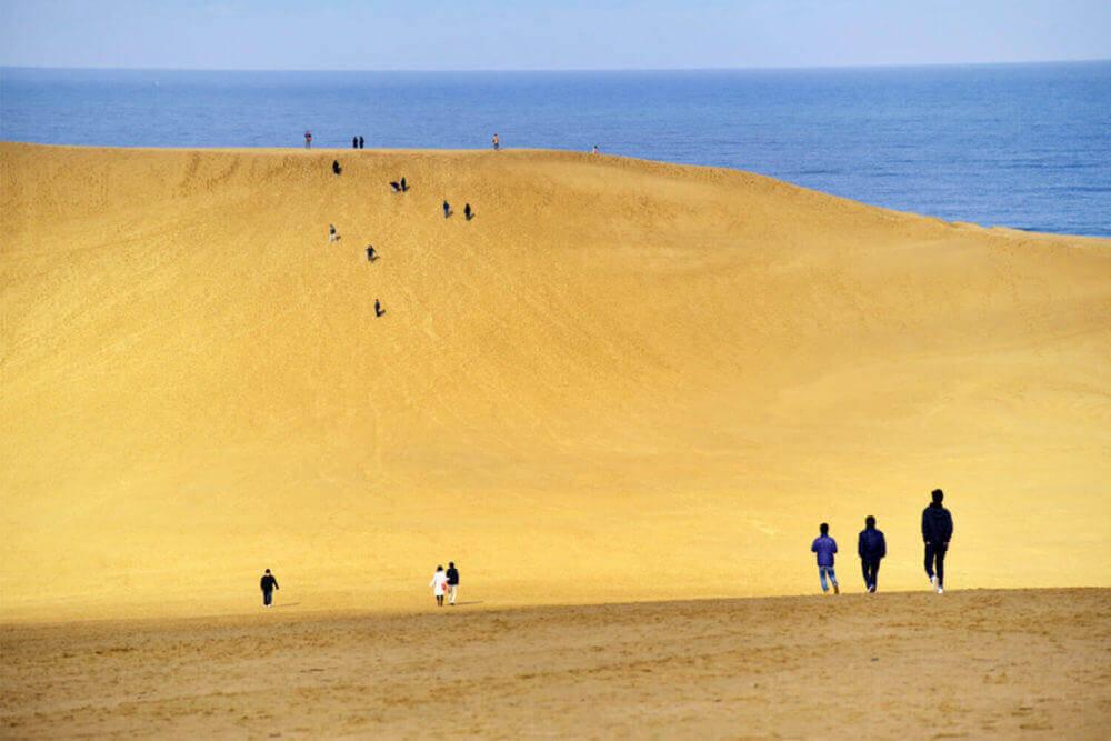 टोटोरी रेत टिब्बा, टोटोरी, जापान = शटरस्टॉक