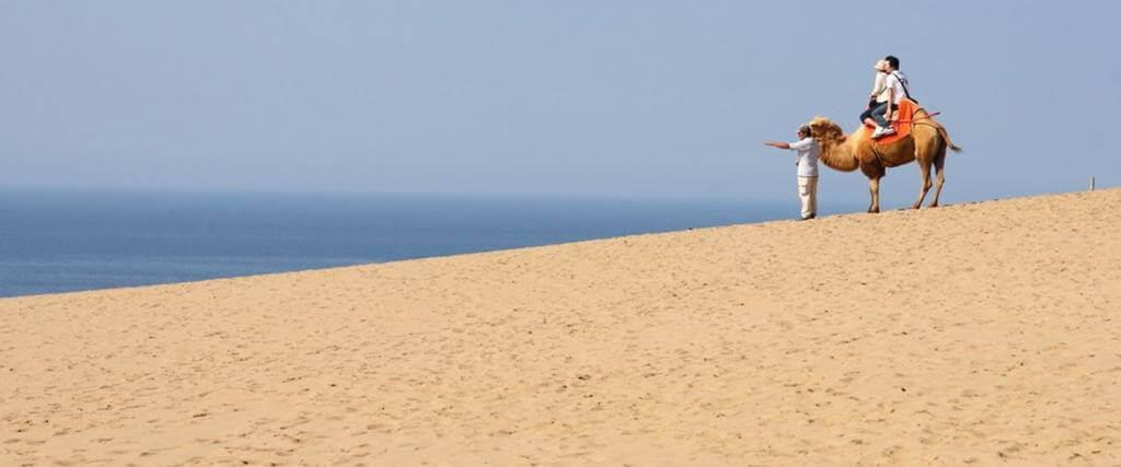 Tottori sand dunes, Tottori, Japan