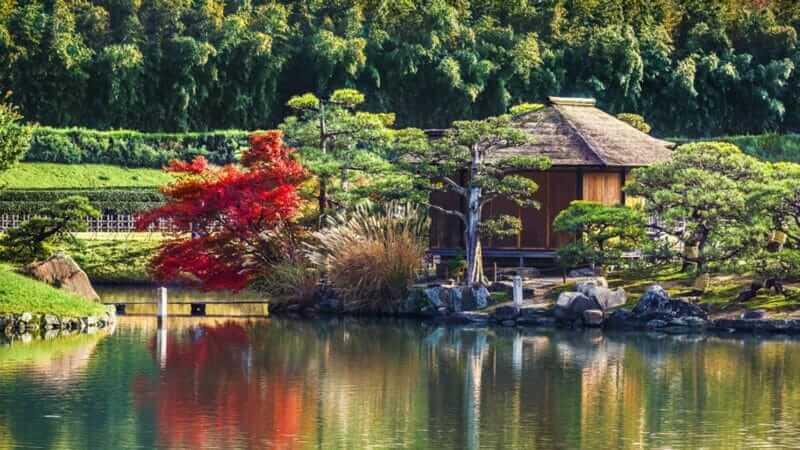 Phòng trà Shima-Jaya tại vườn Korakuen ở Okayama = màn trập