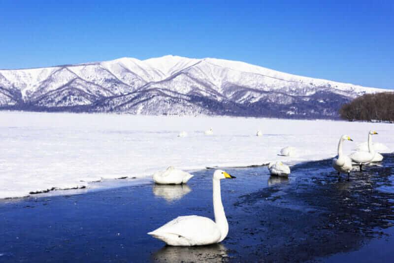Lake Kusharo winter landscape = shutterstock