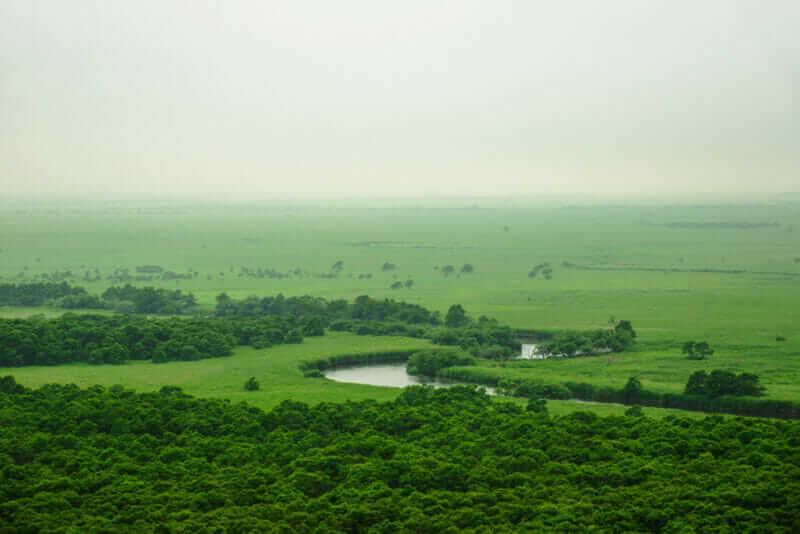 Kushiro Marsh Area ,Hokkaido,Japan = shutterstock