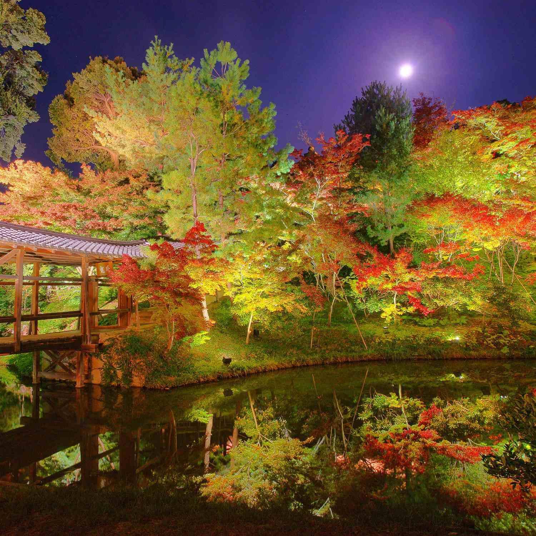 Kodaiji Temple in Kyoto = Shutterstock 1