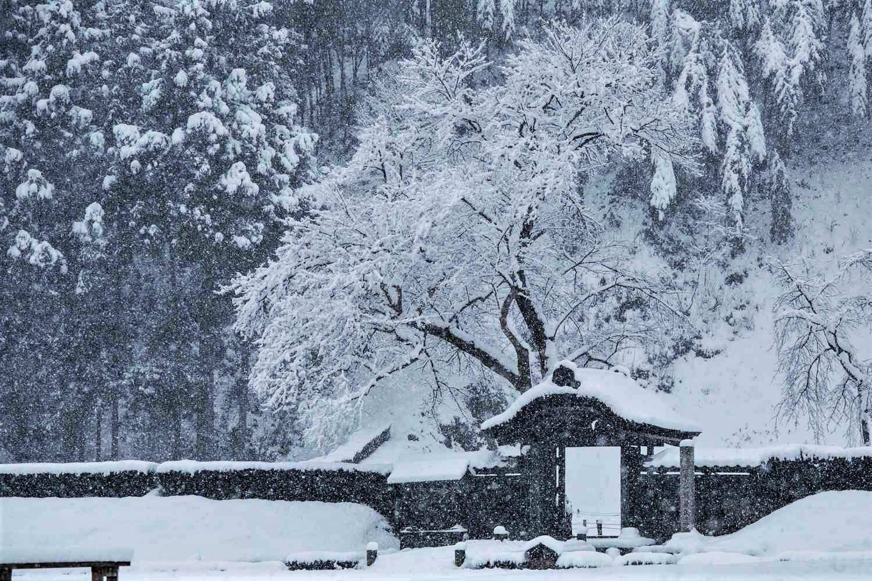 Ichijodani, Fukui Prefecture