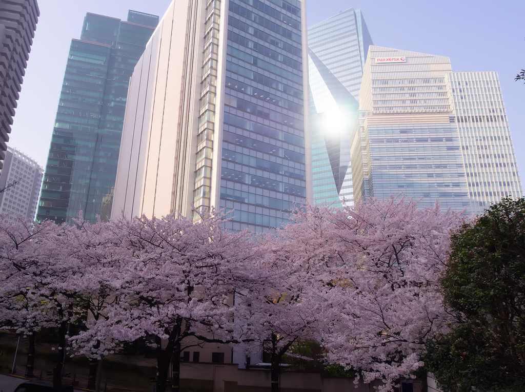 Акасака имеет много больших отелей и ресторанов, Акасака, Токио = Shutterstock