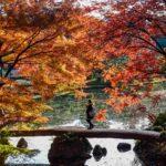 Rikugien Garden - один из самых известных традиционных японских садов в Токио = Shutterstock
