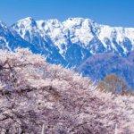 Kai-Komagatake, which straddles Nagano and Gifu prefectures = Shutterstock
