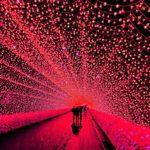Nabana no Sato's illumination = Shutterstock 1