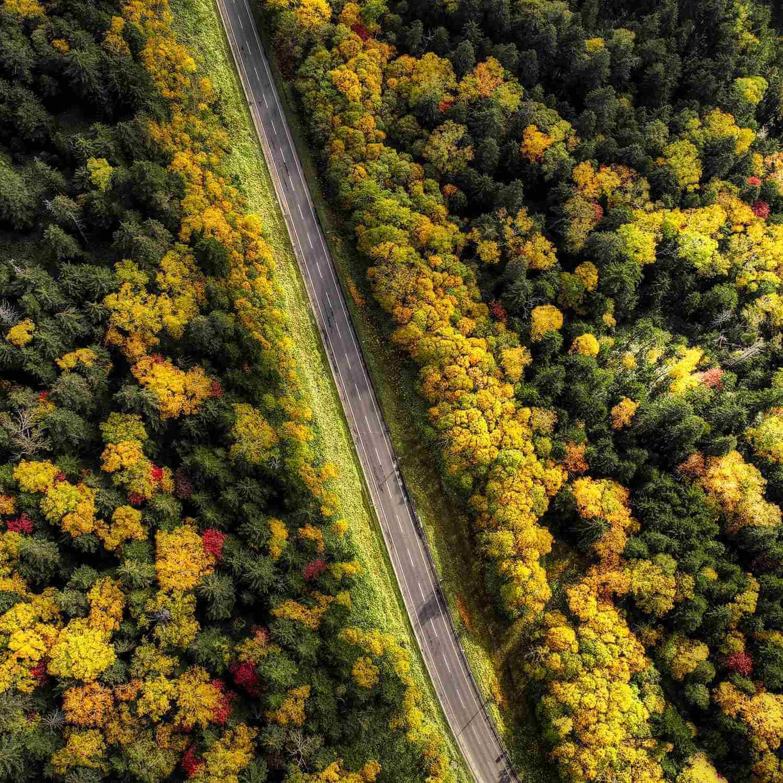 Mikuni Toge Pass in Daisetsuzan National Park, Hokkaido = Shutterstock 1