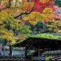 Daitokuji Temple in Kyoto = Shutterstock 1