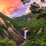 Yakushima Island is full of wild nature = Shutterstock