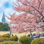 Shinjuku Gyoen National Garden in Tokyo = Shutterstock 1