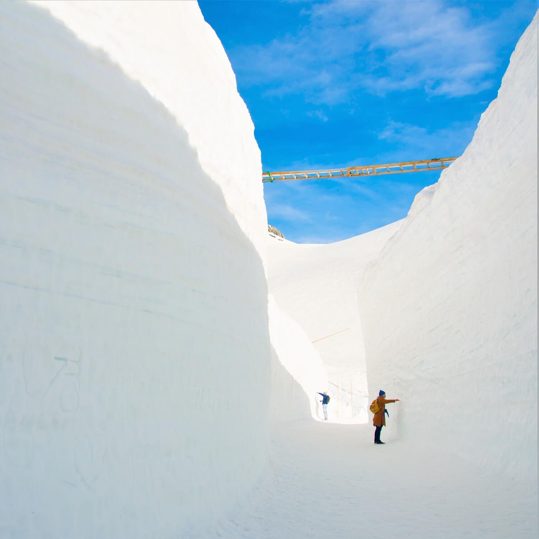 Tateyama Kurobe Alpine Route=Shutterstock