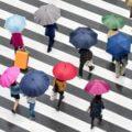 Intersection of Shibuya, Tokyo